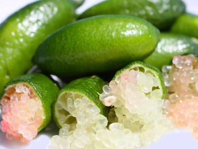 El caviar cítrico, una delicatessen por la que apuesta Agromarketing