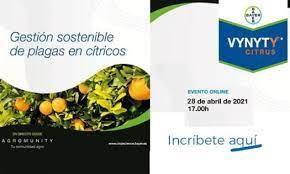 Bayer confía en Agromarketing para el lanzamiento de su nuevo producto Vynyty® Citrus para la gestión sostenible de plagas en cítricos
